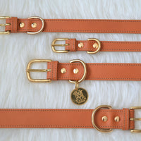 Luxury designer collars