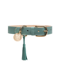 Luxury designer dog collar set - Pastel Green