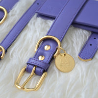 Luxury designer dog accessories purple