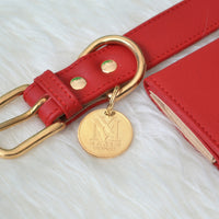Designer red dog collar set