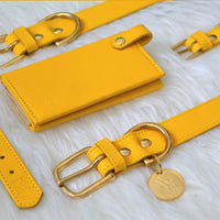 Luxury designer dog collar set - Yellow