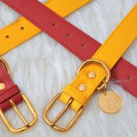 Yellow, red dog collar with pet ID