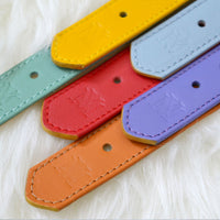 yellow, red, purple dog collars