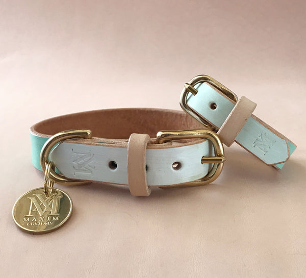 Dog collar with matching bracelet