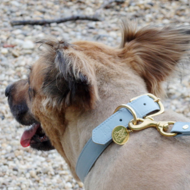 products/pastel-blue-dog-collar-leather.jpg