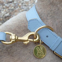 Best dog collars - pastel blue designer dog collar