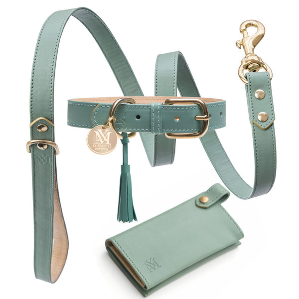 Best dog accessories - leather luxury dog collar  set - pastel green