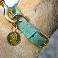 Best dog accessories - leather luxury dog collar - pastel green