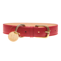 Red dog collar.