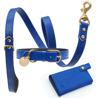 Elegant blue designer dog collar set by Maxim Customs