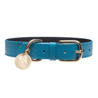 Dog collar with pet ID - turquoise