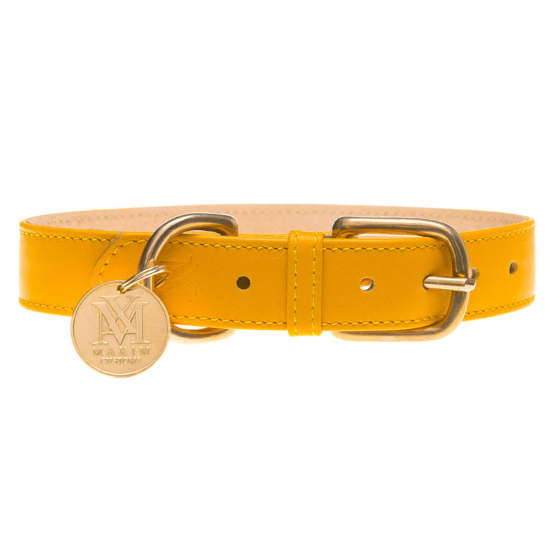 products/yellow-dog-collar-1600.jpg