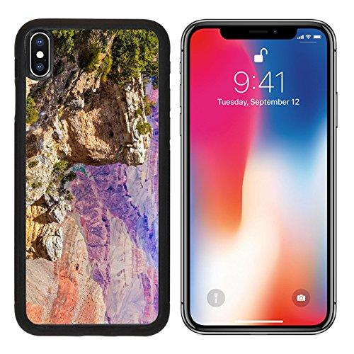 MSD Premium Apple iPhone X Aluminum Backplate Bumper Snap Case Arizona Grand Canyon National Park Mother Point and Amphitheater USA Image ID 23997868