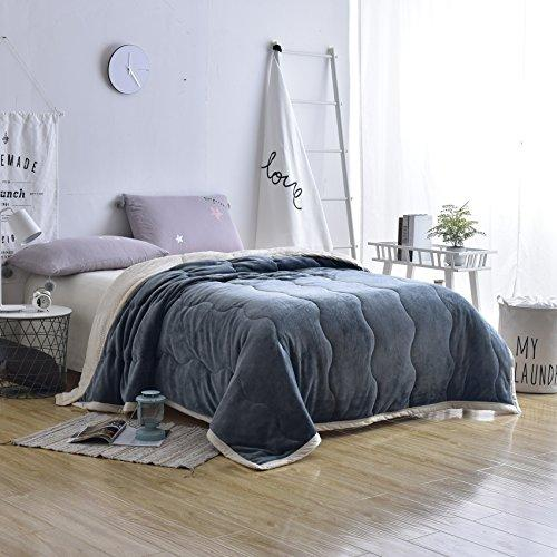 Queen Bed Blanket Blue Fleece Luxury Cozy Plush 3 Layer Microfiber Fuzzy Thick Blankets for winter ,6 pounds 80x 90 Inch