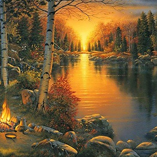Softmusic Wall Art Forest Sunset Landscape Resin Diamond 5D DIY Painting size 30cm x 40cm (One Color)