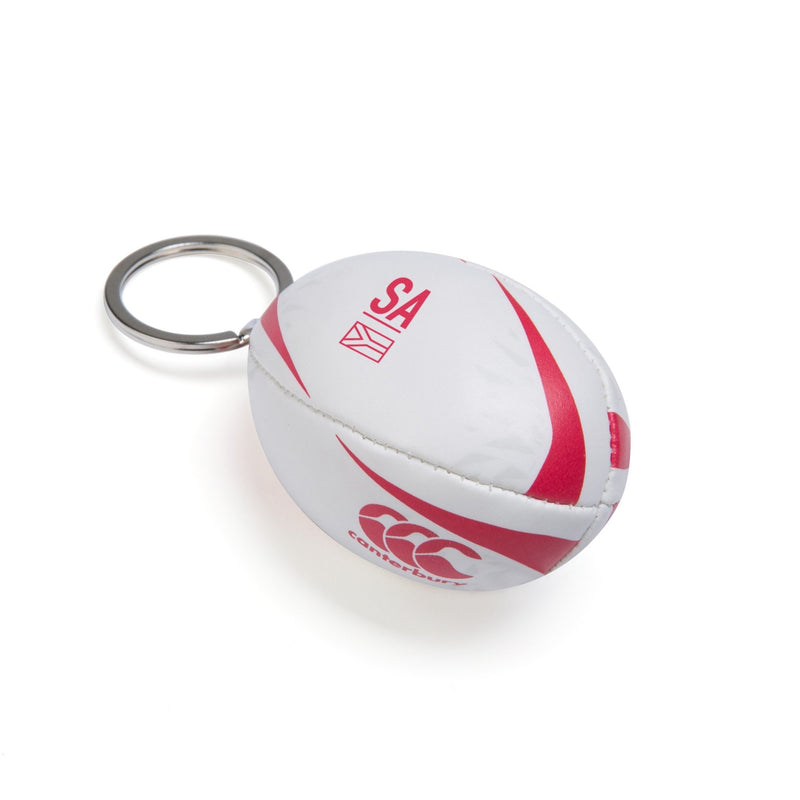British & Irish Lions Ball Keyring - Absolute Rugby