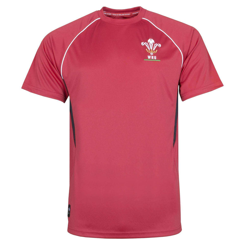 Wales Rugby Kids Panel Tee - Absolute Rugby