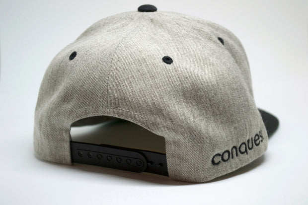 Ace Snapback (grey) back