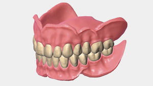 Exocad Purchase License Full Denture Module