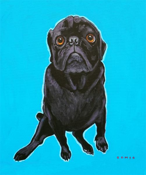 products/BlacPugFullBoday.jpg