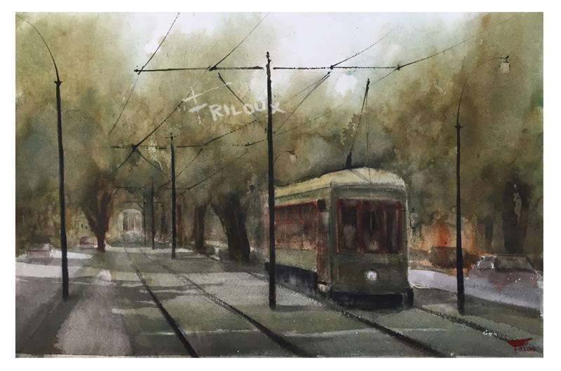 products/SFStreetcarTrees.jpg