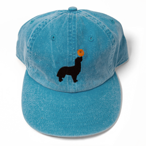 Buddy Turquoise Hat
