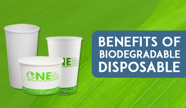 BENEFITS OF BIODEGRADABLE DISPOSABLE