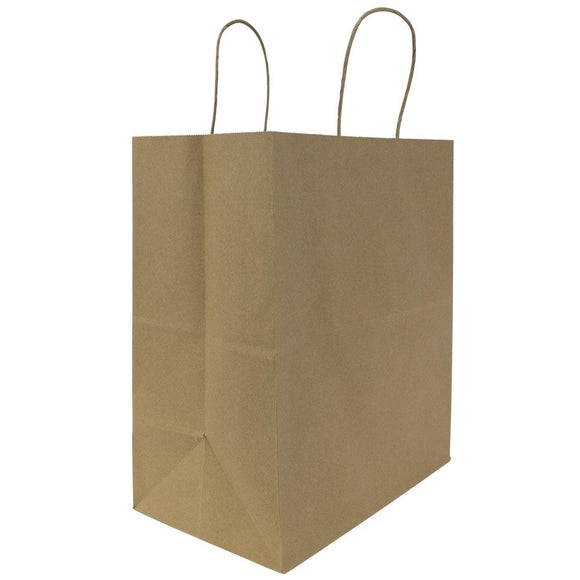 Karat Malibu (Large) Paper Shopping Bags - Kraft - 250 ct-To-Go Packaging-Karat-Carry Out Supplies