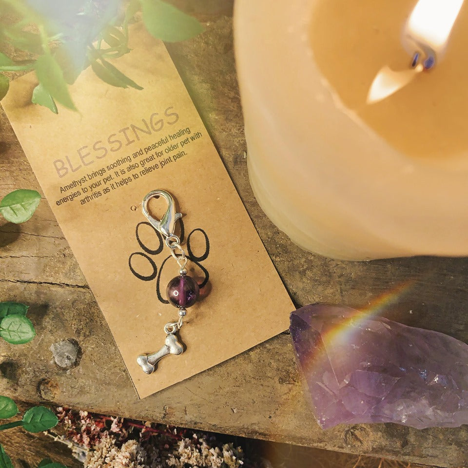 Blessings Amethyst Pet Charm With Bone