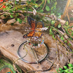 Orange Butterfly On Stand
