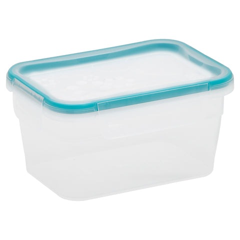Snapware TS Plastic 1.18L Rectangle-1109972