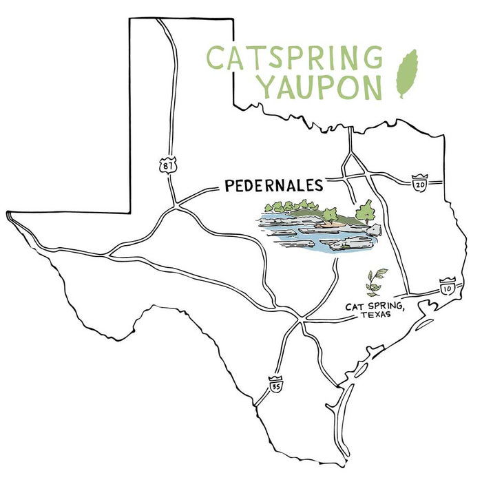 CatSpring Yaupon Tea - Pedernales Green Yaupon