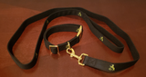 K9 Tactical Adjustable Dog Training Collar & Leash Gun Colt Gold Plated T-T998