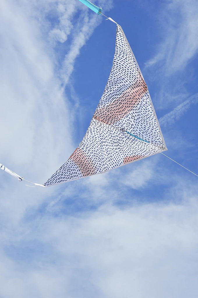 Delta Kite Multi Wind