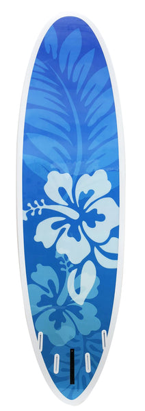 10'0 'Rapture' All Round Epoxy SUP Package