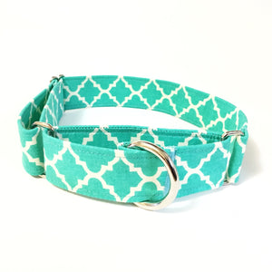 Kylie Martingale Collar - N.G. Collars