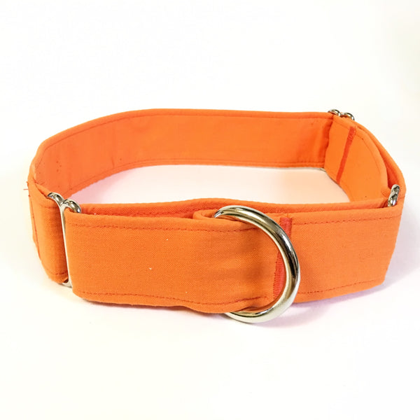 Pumpkin Patch Martingale Collar - N.G. Collars