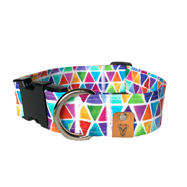 Equality Buckle Collar - N.G. Collars