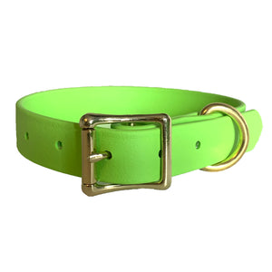 Lime Green Proof Collar - N.G. Collars