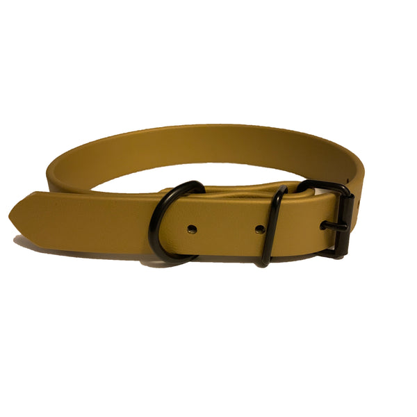 Gold Proof Collar - N.G. Collars
