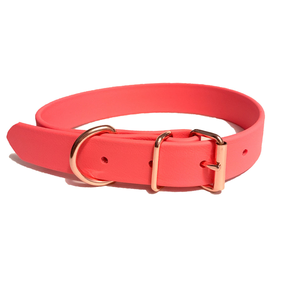 Coral Proof Collar