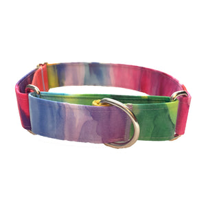 Rainbow Wash Martingale Collar - N.G. Collars