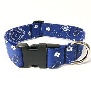 Ol' Blue Buckle Collar - N.G. Collars