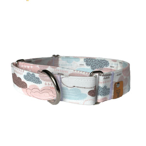 April Showers Martingale Collar - N.G. Collars