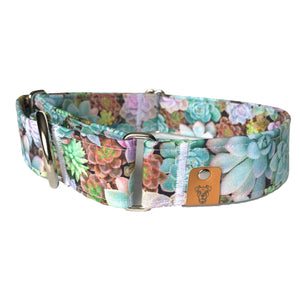 Succulents Martingale Collar - N.G. Collars