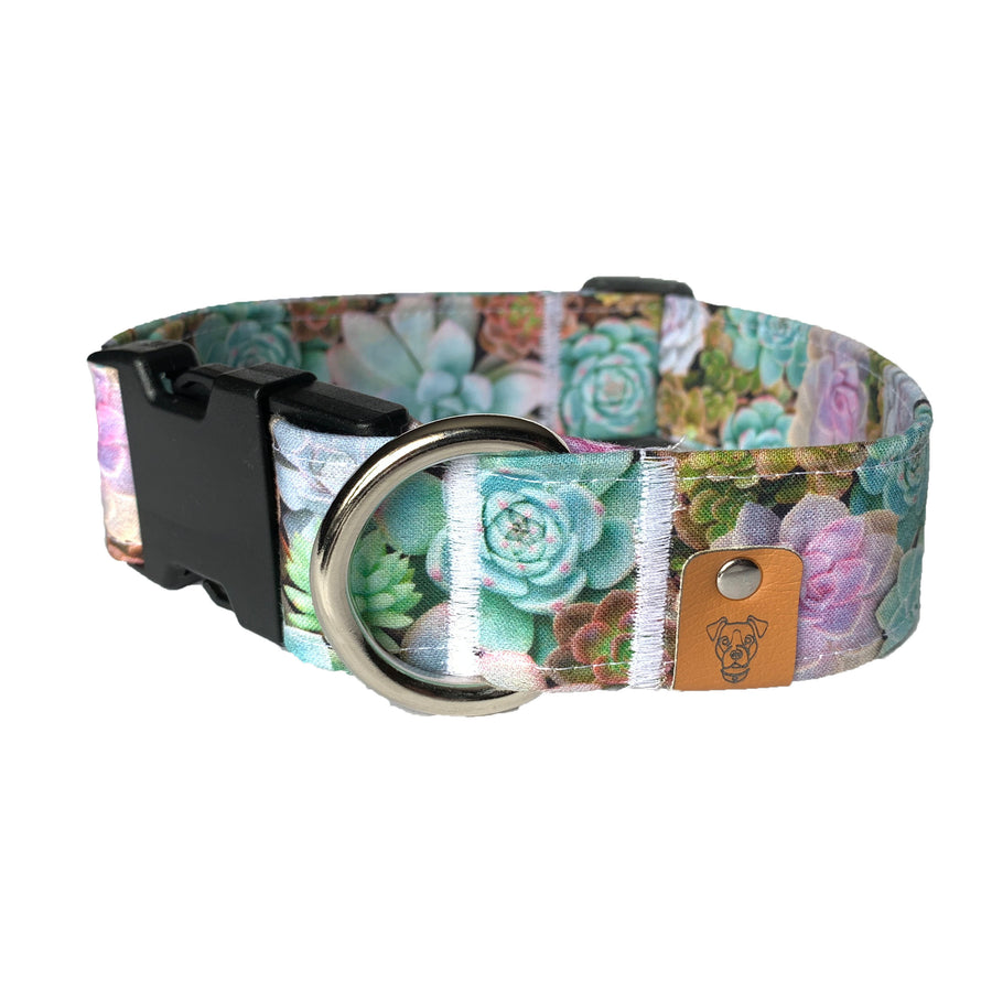 Succulents Buckle Collar - N.G. Collars