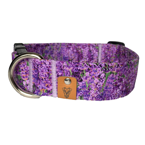 May Flowers Buckle Collar - N.G. Collars