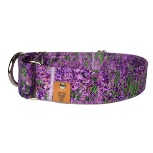 May Flowers Martingale Collar - N.G. Collars