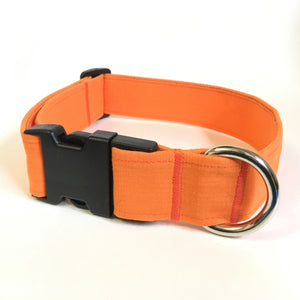Pumpkin Patch Buckle Collar - N.G. Collars