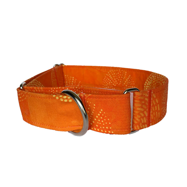 Sunkissed Citrus Martingale Collar